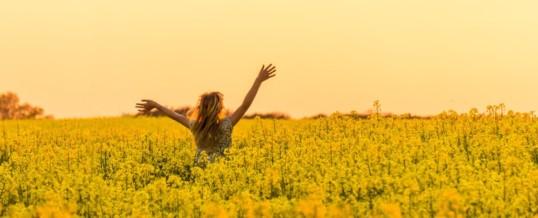 9 Impulse für mehr Freude & Zufriedenheit