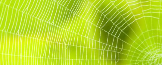 7 Networking-Tipps (nicht nur) für Deine Bewerbungen
